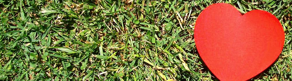 Afbeelding van rood hart op groen gras